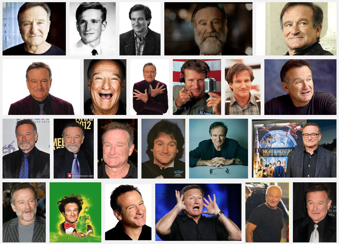 Google-search-robin-williams